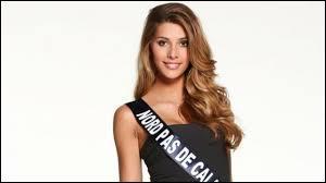 Camille Cerf est la gagnante d'un concours de beauté présenté sur TF1.Lequel ?