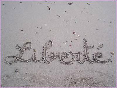 """Lequel de ces Paul a écrit le poème nommé """"Liberté"""" ? (...sur la plage et sur la neige, j'écris ton nom...)"""