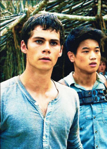 Que sont Minho et Thomas ?