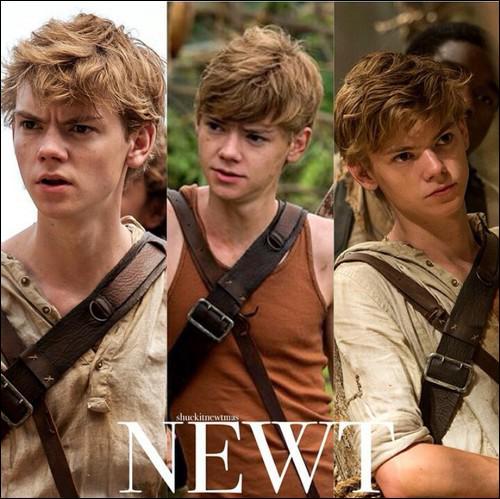 Quel acteur joue le rôle de Newt ?