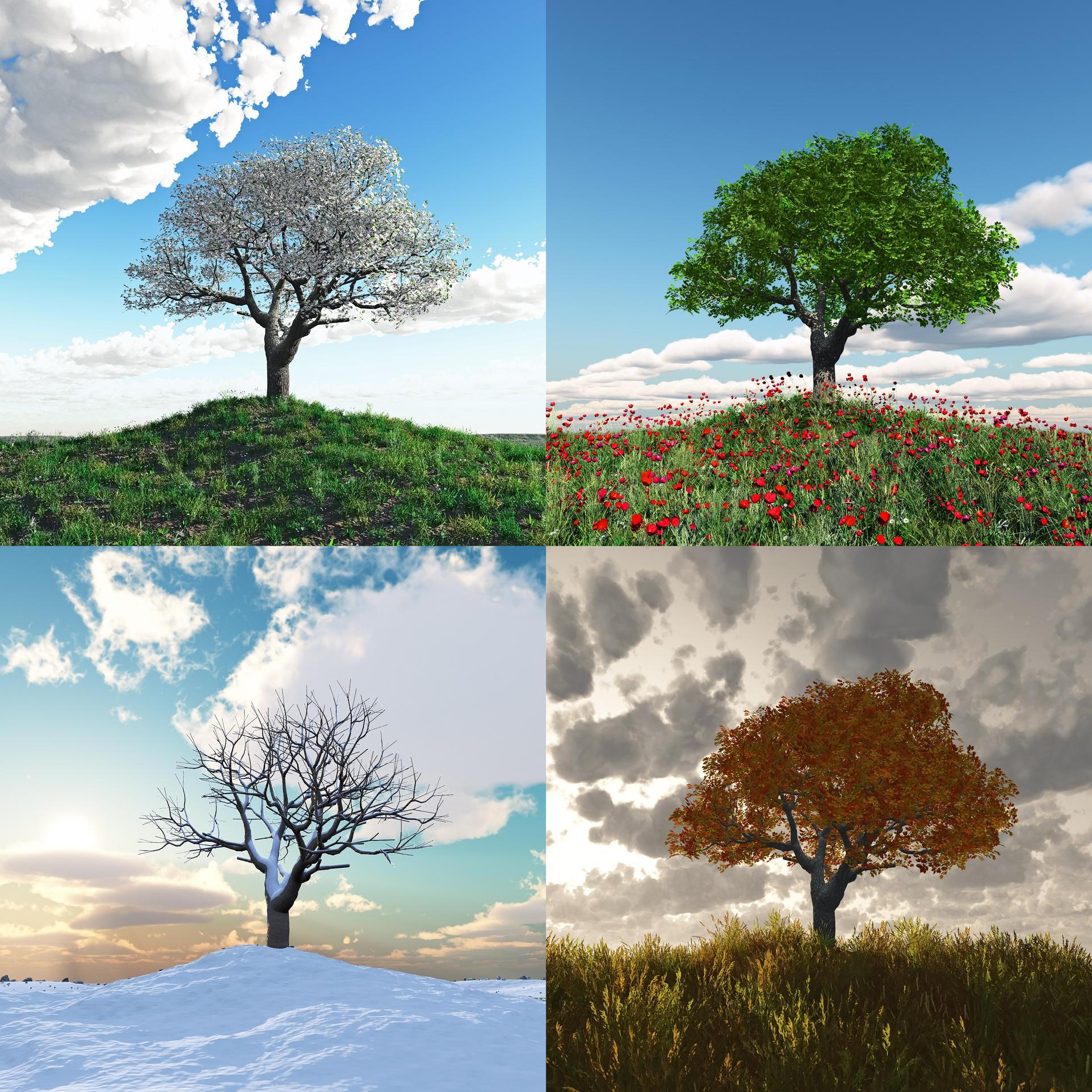 4 saisons dans un quiz !