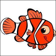 Les poissons en charade (2)