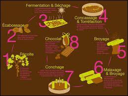 Quel est le plus grand pays producteur de chocolat au monde ?