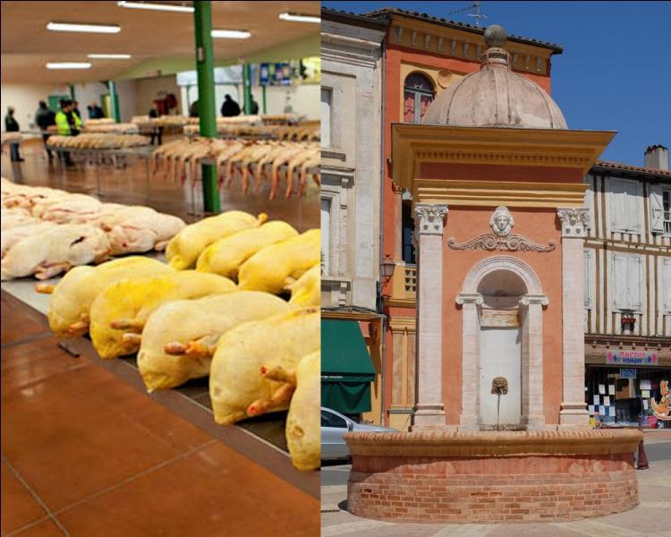 """Au coeur du département, cette petite cité gersoise est surnommée la """"Mecque du Foie gras"""", en raison de son important marché au gras..."""