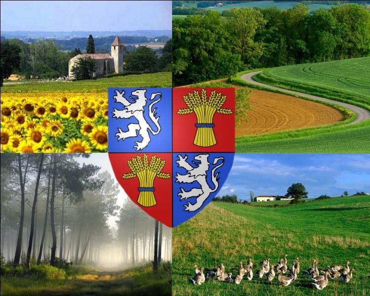 Ancienne province française, la Gascogne, aujourd'hui identité culturelle, était constituée principalement par trois départements actuels. Lesquels ?