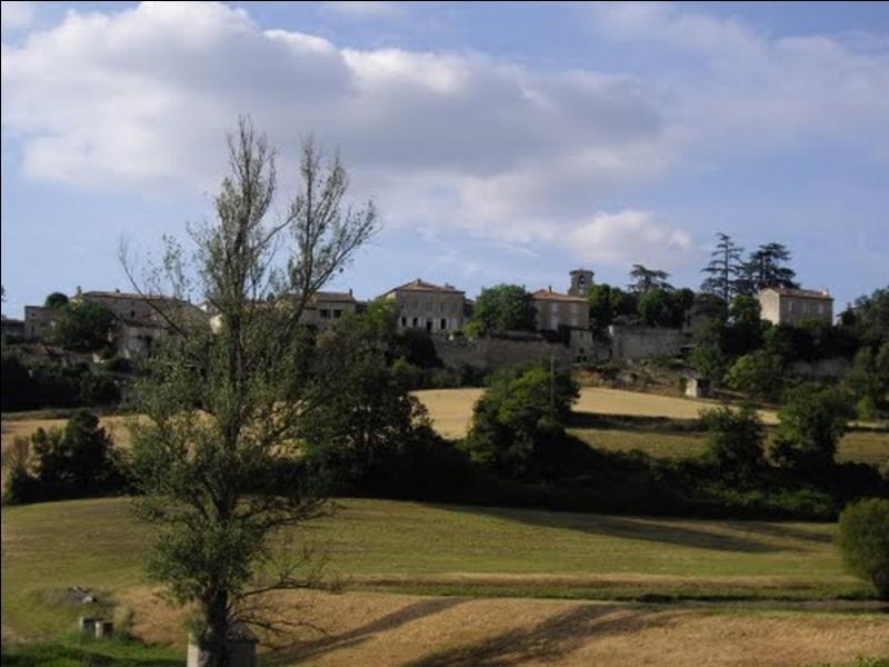 Quel évènement se déroule chaque année en août, dans le petit hameau de Lialores à Condom dans le Gers ?