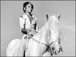 Dans quels films le cheval de Camargue est-il un héros ?