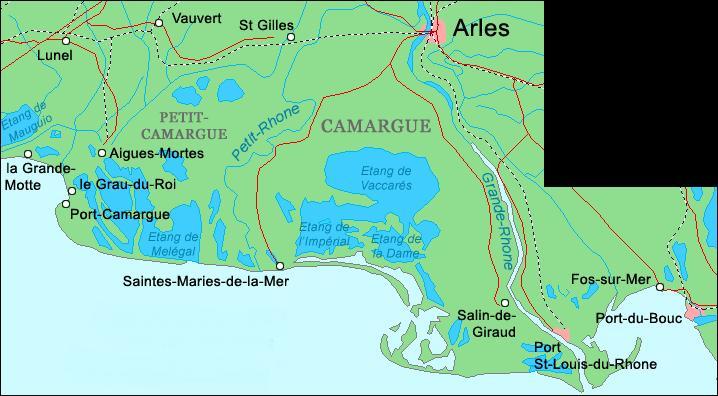 Le cheval de Camargue est originaire de Camargue, en France. Où se situe cette région ?