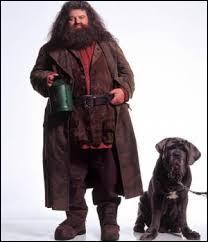 """Comment s'appelle le chien de Hagrid dans """"Harry Potter"""" ?"""