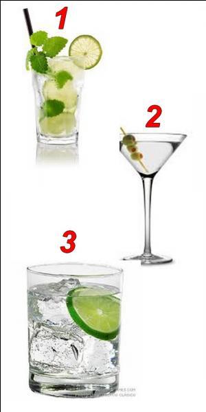 Sur quelle image peut-on voir une vodka Martini ?
