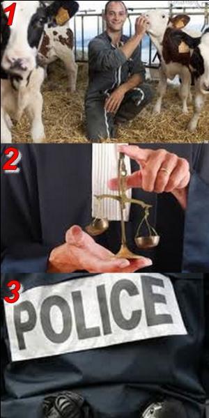 """Quel est le synonyme de """"vache"""" ?"""