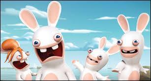 Comment appelle-t-on les lapins présents sur la photo ?