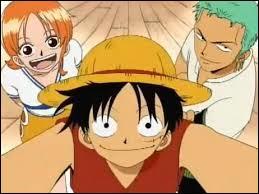 En ce moment, quel moyen de transport utilisent Luffy, Zoro et Nami ?