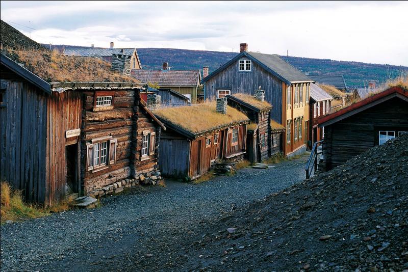 Décrite par l'écrivain norvégien Johan Falkberget, la ville de Roros a été inscrite à l'UNESCO pour sa valeur symbolique. Quelle est-elle ?