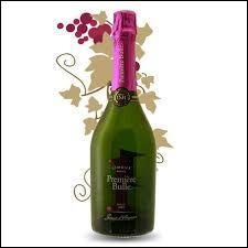 De quelle ville ce vin pétillant appelé blanquette, fait-il la renommée ?