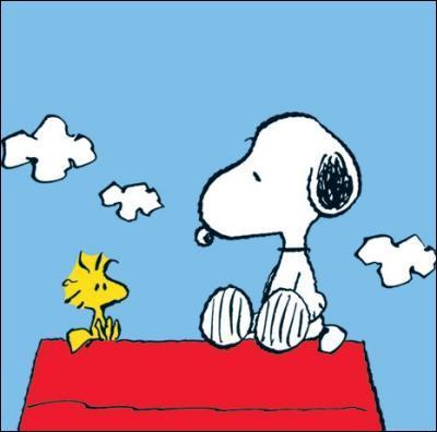 Vous connaissez Snoopy, très célèbre chien philosophe. Mais connaissez-vous le nom de son ami, un petit oiseau jaune ?