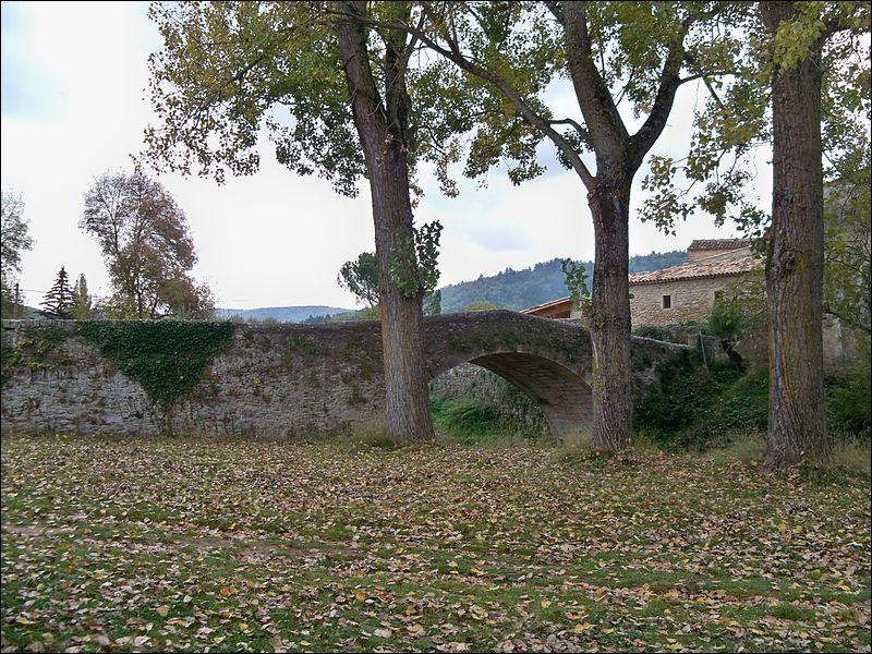 Ce pont d'une arche en dos d'âne a été construit en 1740 sur l'Encrème dansle département des Alpes-de-Haute-Provence à :