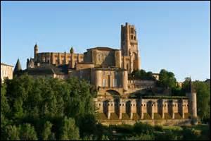 49 231 habitants autour de la splendide cathédrale Sainte-Cécile ressemblant à une forteresse militaire. La ville d'Albi est surnommée --------, en raison de nombreuses construction en briques.