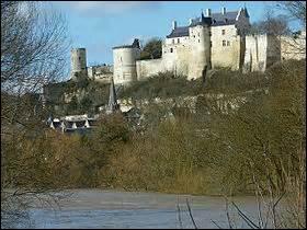 L'une des deux sous-préfectures de l'Indre-et-Loire est désignée par la belle périphrase : « La fleur du jardin de la France ». Et sa devise n'en est pas moins belle : « Petite ville, très grand renom ».Son château surplombe la Vienne.