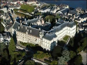 Dans quelle ville de plus de 49 000 habitants, située en Loir-et-Cher, visiterez-vous ce château ?