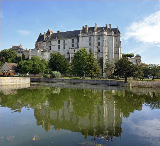 14 556 habitants pour cette ville construite entre Orléanais, Beauce et Perche.Son château, vraie place forte à l'origine, est à présent un superbe édifice Renaissance ; il se dresse sur un éperon rocheux et domine la vallée du Loir.