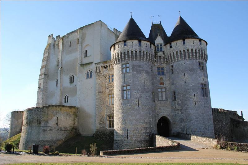 Ville située dans la région du Perche, dominée par le château datant du tout début du XIe siècle et de vocation toute militaire ; ce dernier surveille les accès à Chartres et vers la ville du Mans.De quel château est-il question ?