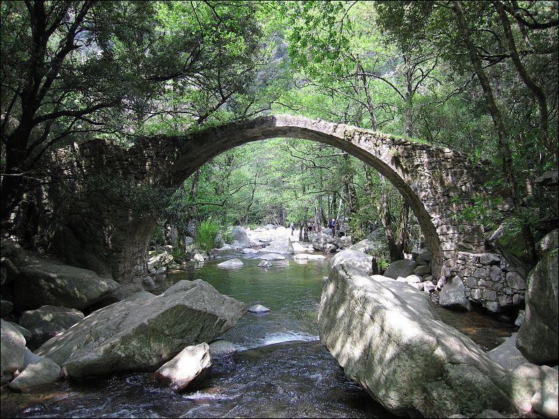 Ce pont construit en 1797 sur la Tavulella, à Evisa en Corse-du-Sud, est classé aux monuments historiques depuis 1990 ; il se nomme :