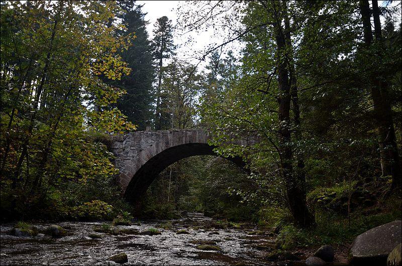 Ce pont piétonnier sur la Vologne date du XVIIIe siècle. Il a été construit àGérardmer dans les Vosges ; il se nomme :