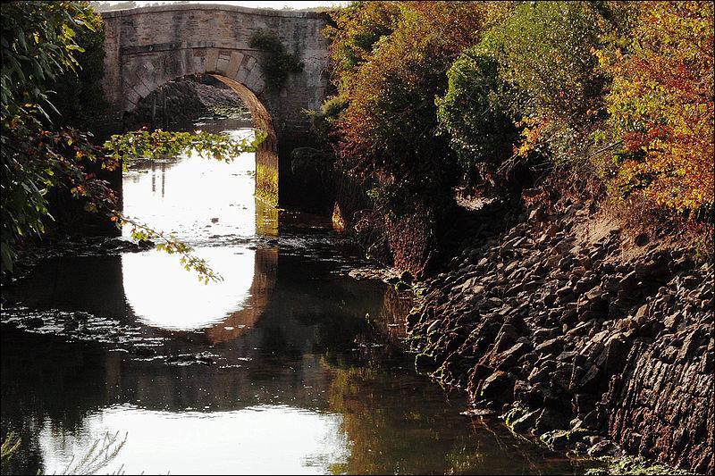 Ce pont d'une arche construit sur le canal de la Brande au Château-d'Oléron, en Charente-Maritime au XVIIIe siècle, se nomme :