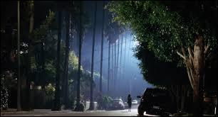 Le film de David Lynch, devenu culte, porte le nom de l'une des routes escarpées de cette ville immense de Californie, Mullholland Drive. Quelle est cette ville ?