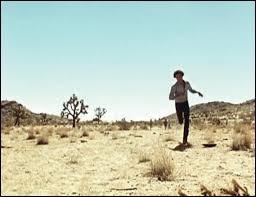 Ce film très engagé Punishment park, date de 1970, il est ahurissant, coup de poing, inoubliable. Il a été tourné dans l'un des lieux les plus emblêmatique de Californie, le Désert. Quel désert ?