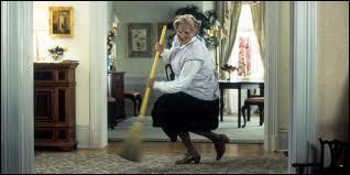 Le film Madame Doubtfire, avec un irrésistible Robin Williams, fut un succès planétaire. La famille du film vit dans une ravissante maison, couleur pastel, d'un style reconnaissable entre tous, qu'on trouve... ?