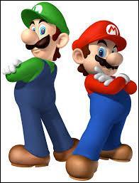 Mario et Luigi sont :