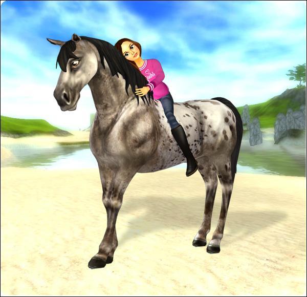 Quel est le nom du jeu de cheval ?