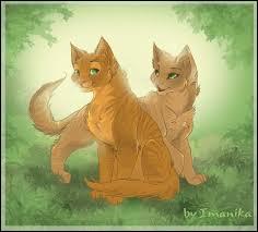 Au début, je le détestais. Mais que dire, j'ai quand même eu deux chatons avec lui ! Qui suis-je ?
