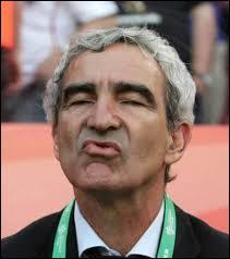 En 2008, après sa défaite 2/0 face à de l'Italie, l'équipe de France fut éliminée de l'Euro. Quelle déclaration surprenante Raymond Domenech a-t-il faite à l'issue de ce match ?