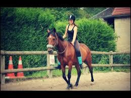 Comment s'appelle le cheval que Wendy a pris en demi-pension ?