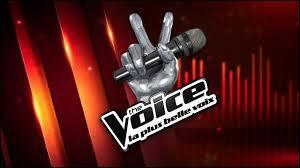 """Sur quelle chaîne trouve-t-on """"The Voice"""" en 2015 ?"""
