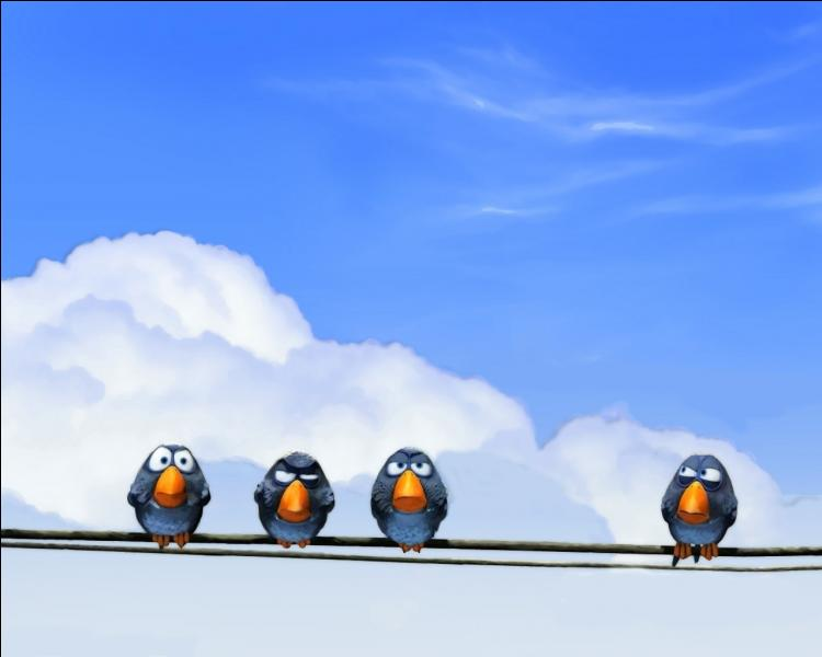 13 oiseaux sont sur une branche de pommier, un chasseur passe et tue un oiseau. Combien en reste-t-il sur la branche ?
