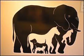 Combien comptez-vous d'animaux sur cette image ?