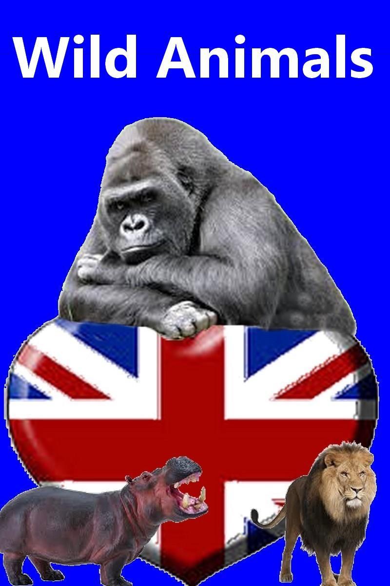 Les animaux en anglais