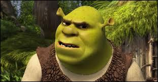 Shrek accepte que l'Âne dorme dans son marais, mais où ?