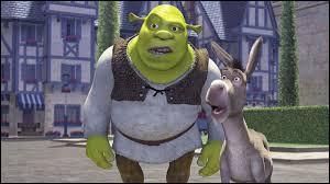 D'après Shrek, les ogres ont des couches, comme :