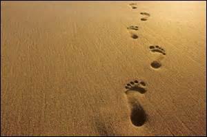 Où vous situez-vous, ici, puisque vous avez suivi ces traces ?