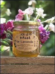 Lequel de ces types de miel n'existe pas ?