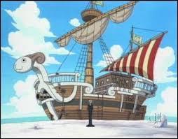 Comment s'appelle le nouveau bateau que Kaya a offert à Luffy et ses amis ?