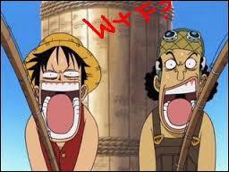 Que proposa Luffy à Usopp ?