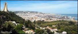 Je suis Alger, capitale d'un pays qui me ressemble, lequel ?