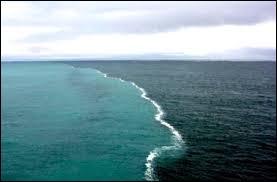 Quel pays n'est pas bordé par la mer Baltique ?
