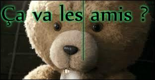 ... cet ensemble de défauts, Ted a plein de qualités.
